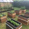 Nemme DIY højbede til grøntsager eller krydderurter
