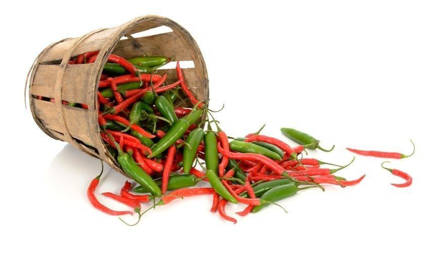 Chili i kurv - dyrk chili