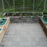 drivhus udplantet tomat, chili, agurk