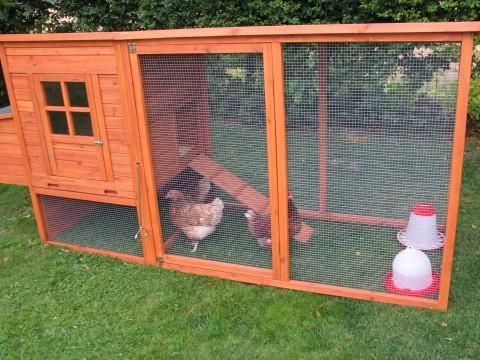 hønsegård hønsehus