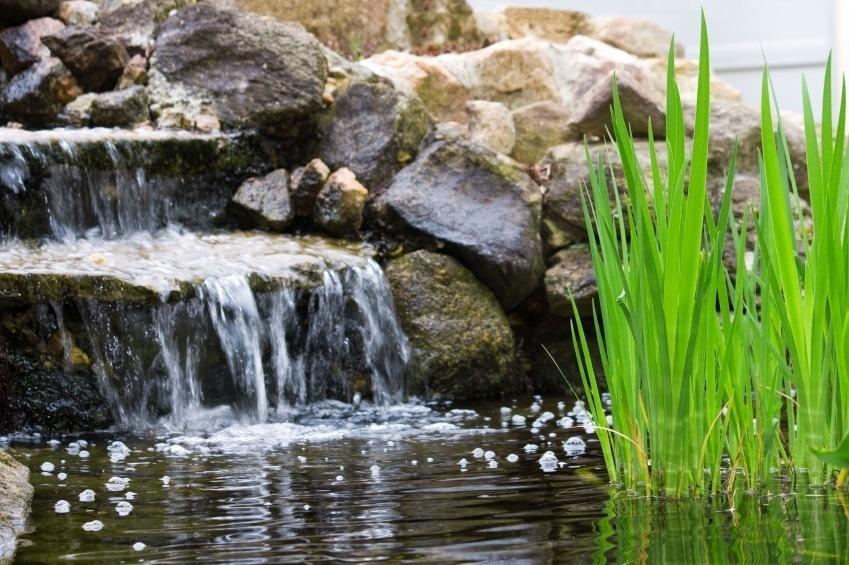 Vand i haven   havebassin   små søer med fisk og planterhus på landet